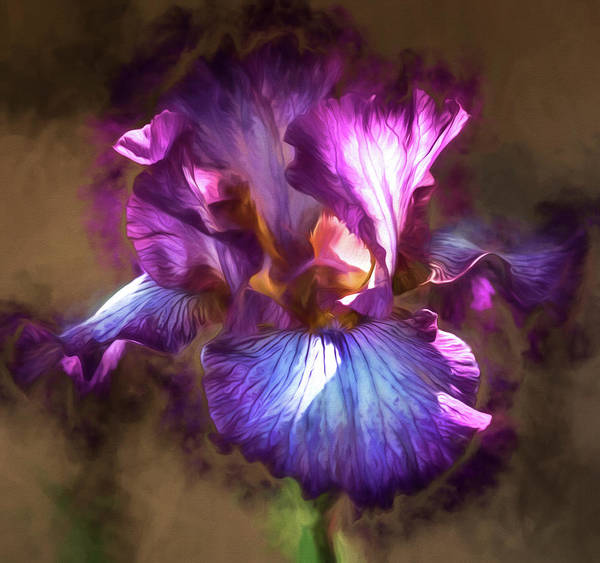 Digital Art - Sunlight Dancing On Iris by Teresa Wilson