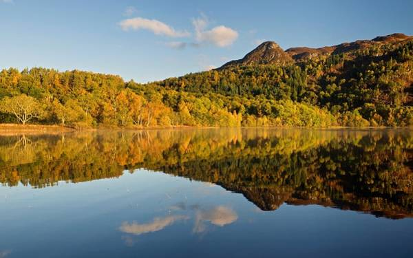 Photograph - Sunlight Hits The Banks Of Loch Achray by Stephen Taylor