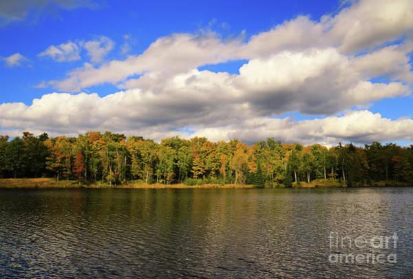 Photograph - Sunlight On Lake Plumbago by Rachel Cohen
