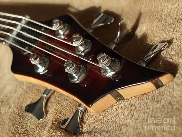 Photograph - Sunlight On Tuning Pegs by Vivian Martin