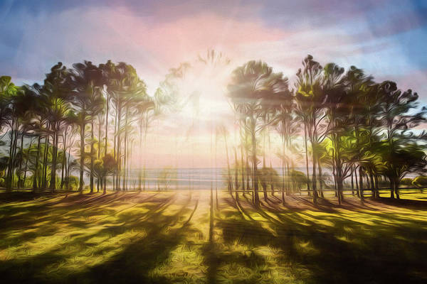 Wall Art - Photograph - Sunlight Over The Lakeside Park by Debra and Dave Vanderlaan