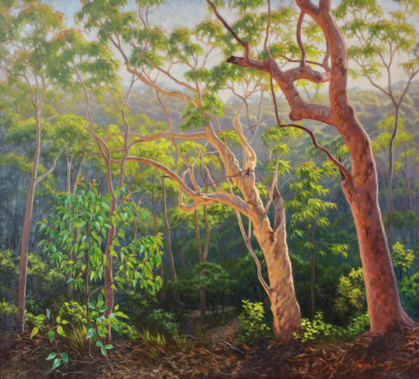 World Heritage Site Painting - Sunlit Morning - Blue Mountains by Fiona Craig