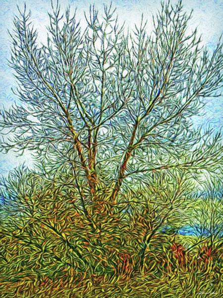Digital Art - Sunlit Trees by Joel Bruce Wallach