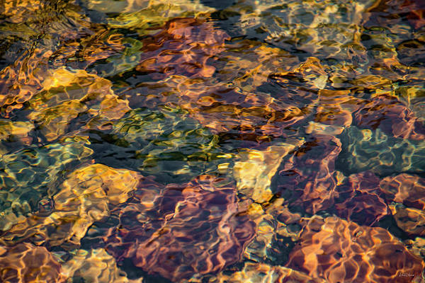 Photograph - Sunlit Water Patterns by Leland D Howard