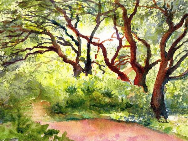 Wall Art - Painting - Sunlit Wooded Path by Carlin Blahnik CarlinArtWatercolor
