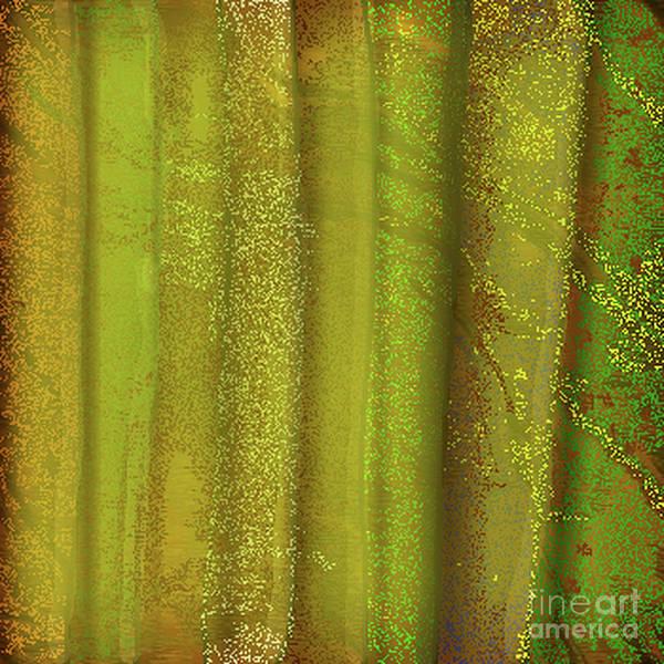 Digital Art - Sunlit Fall Forest by James Fannin