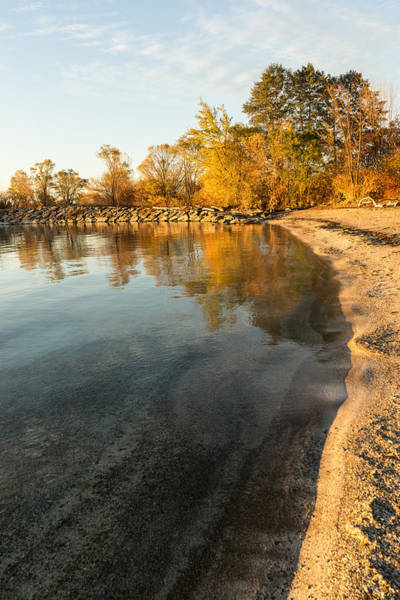 Photograph - Sunny Clean And Transparent - Glossy Autumn Reflections by Georgia Mizuleva