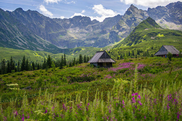 High Tatras Wall Art - Photograph - Sunny Day In The Tatra Mountains by Pati Photography