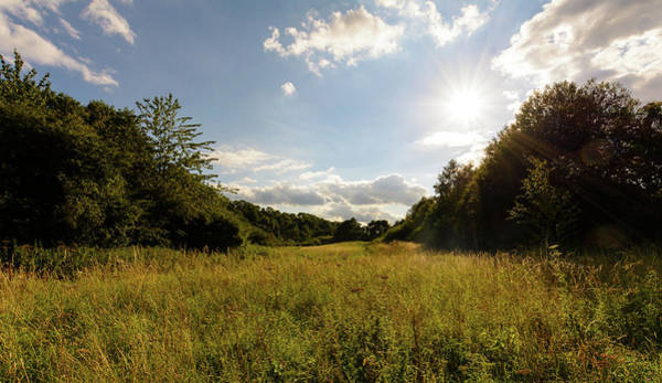Photograph - Sunny Day Over Wild Field In Wiltshire by Jacek Wojnarowski
