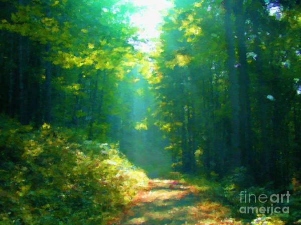 Fall Scenery Mixed Media - Sunny Forest Path by Miroslav Nemecek