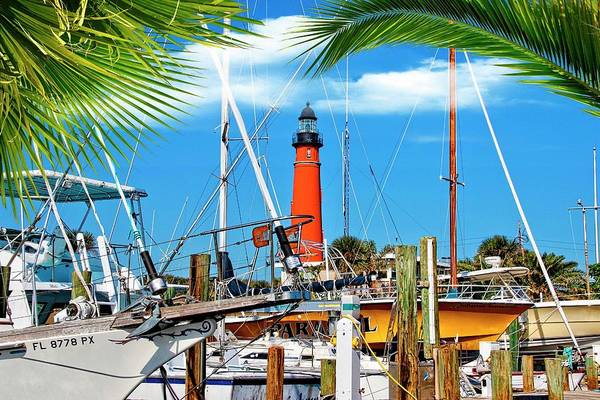 Photograph - Sunny Ponce Inlet by Alice Gipson