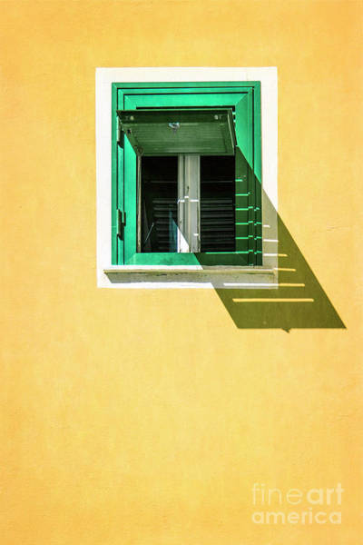 Wall Art - Photograph - Sunny Side Up by Evelina Kremsdorf