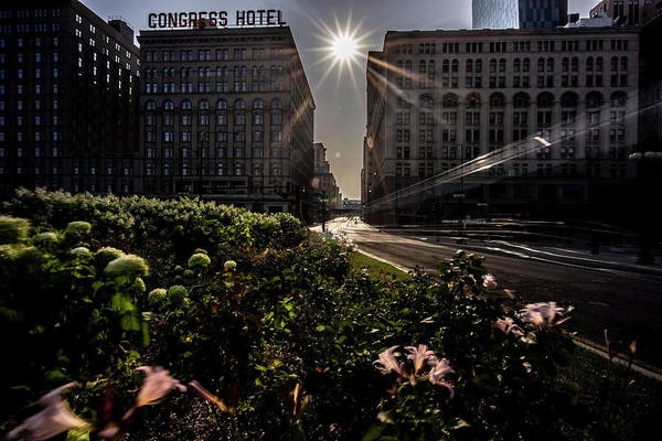 Photograph - sunny summer Chicago scene by Sven Brogren