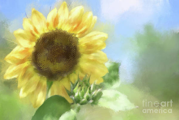Digital Art - Sunny Sunflower by Lois Bryan