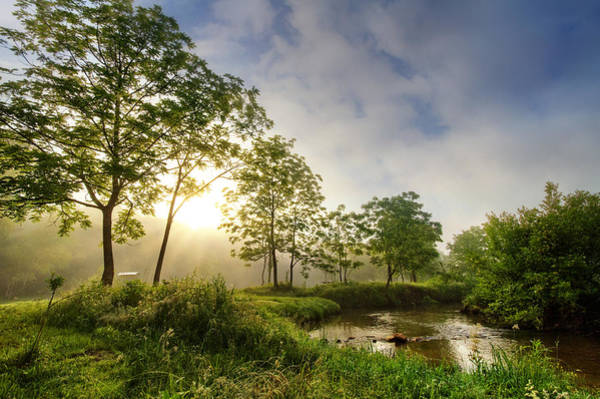 Photograph - Sunrays On The Creek by Debra and Dave Vanderlaan