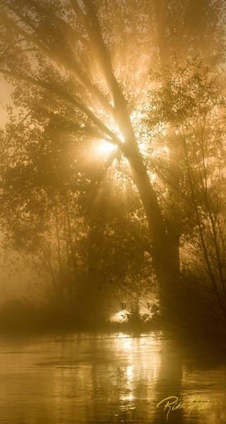Photograph - Sunrise And Fog by Rikk Flohr