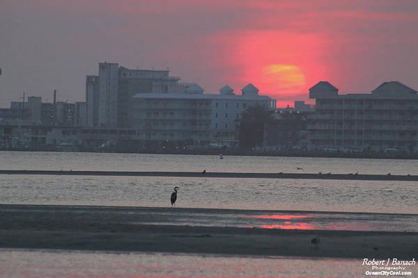 Photograph - Sunrise And Skyline by Robert Banach