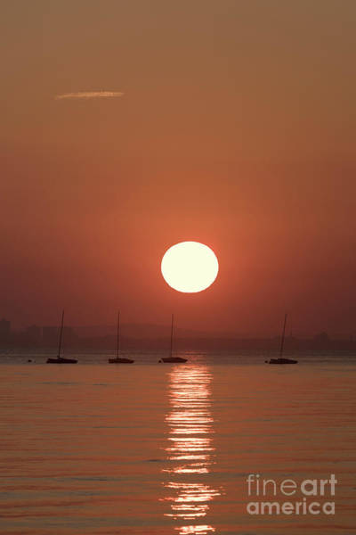 Photograph - Sunrise And Yachts by Clayton Bastiani