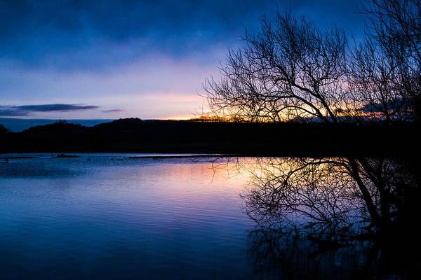 Nottinghamshire Photograph - Attenborough by Chris Dale