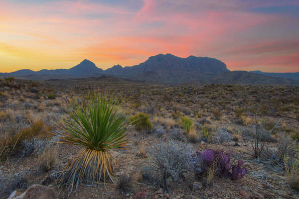 Chisos Mountains Photograph - Sunrise At Big Bend National Park 30 by Rob Greebon