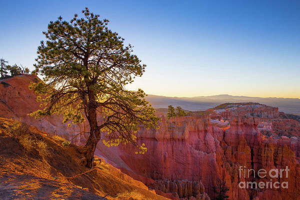 Wall Art - Photograph - Sunrise At Bryce Canyon National Park Utah by Edward Fielding