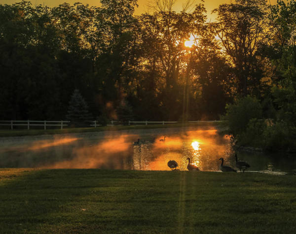 Photograph - Sunrise At Kendrick Woods by Dan Sproul