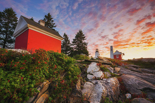 Photograph - Sunrise At Pemaquid Light by Robert Clifford
