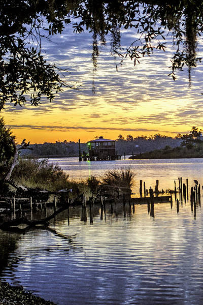 Photograph - Sunrise At The Bon Secour Fishery Vertical by Michael Thomas