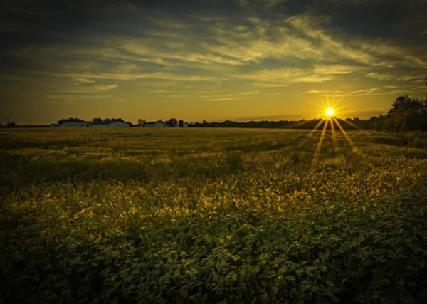 Photograph - Sunrise At The Farm by Francisco Gomez