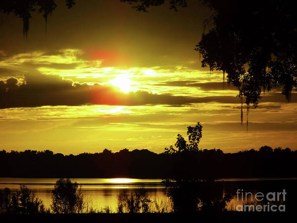 Hackett Photograph - Sunrise At The Lake by D Hackett