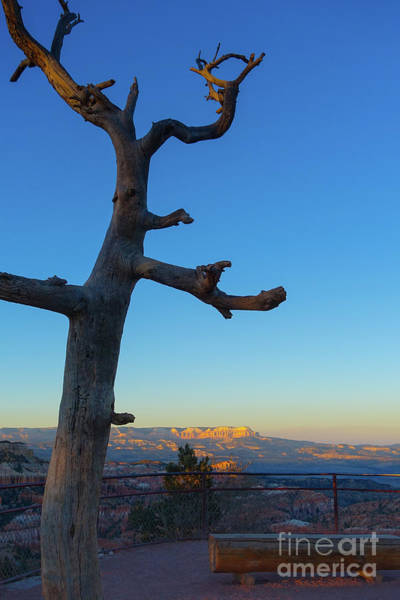 Wall Art - Photograph - Sunrise Bryce Canyon by Wendy Fielding