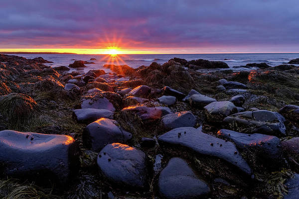 Photograph - Sunrise Fire On The New Hampshire Coast.  by Jeff Sinon