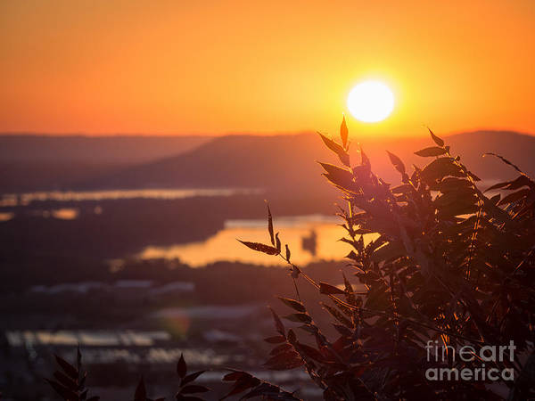 Photograph - Sunrise Garvin Heights With Sumac by Kari Yearous