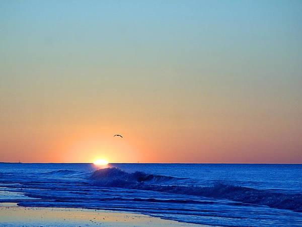 Photograph - Sunrise I V by  Newwwman