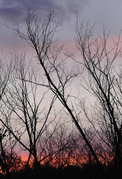 Photograph - Sunrise In Carmel by Frank Mari