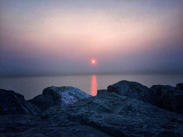 Photograph - Sunrise In Chicago by Nick Heap