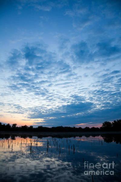 Wall Art - Photograph - Sunrise In The Delta by Gabriela Insuratelu