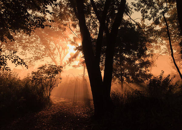 Wall Art - Photograph - Sunrise In The Marsh 3 by Joni Eskridge