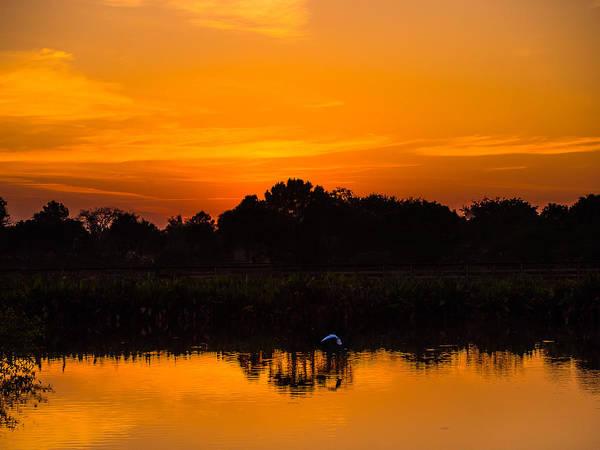Photograph - Sunrise In Wakodahotchee by Robin Zygelman