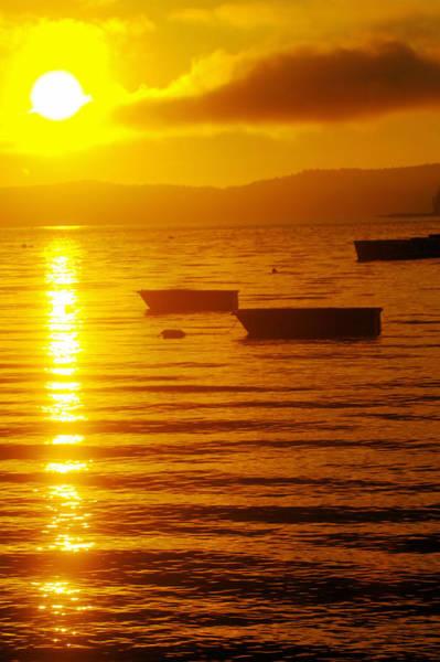 Swan Boats Photograph - Sunrise Near Liliwaup  by Jeff Swan