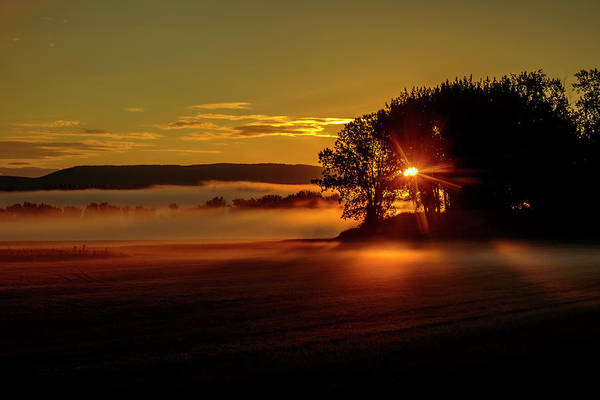 Photograph - Sunrise On A Foggy Morn by Albert Seger