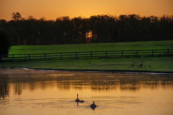 Photograph - Sunrise On A Gettysburg Duck Pond by Bill Cannon