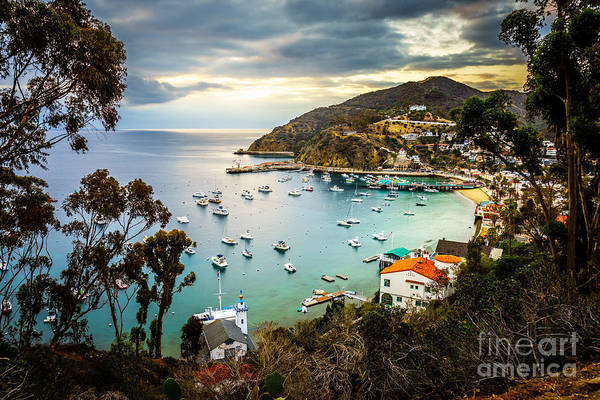Wall Art - Photograph - Sunrise On Catalina Island Avalon Bay California by Paul Velgos