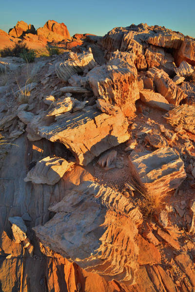 Photograph - Sunrise On Corrugated Rocks In Valley Of Fire by Ray Mathis