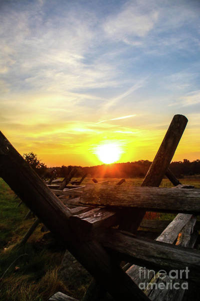 Wall Art - Photograph - Sunrise On The Fence by William Rogers