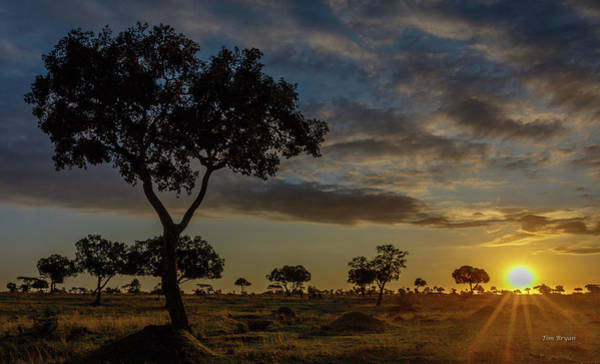 Photograph - Sunrise On The Masai-mara, Kenya by Tim Bryan