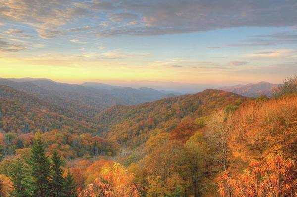 Photograph - Sunrise On The Mountain by Ree Reid
