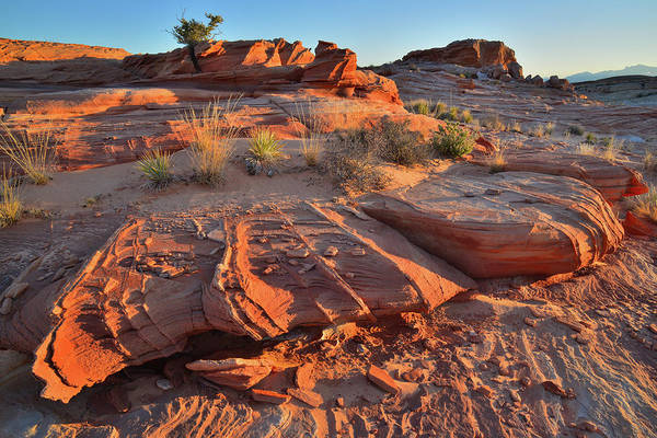 Photograph - Sunrise On Wash 2 In Valley Of Fire by Ray Mathis