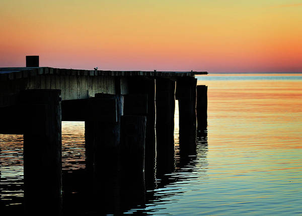 Photograph - Sunrise Over Chesapeake Bay by Rebecca Sherman