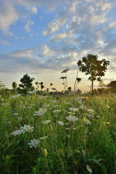 Photograph - Sunrise Over Lakewood Forest Preserve by Ray Mathis